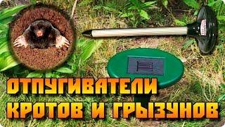Работает! Ультразвуковой отпугиватель кротов и грызунов (мышей, полевок и пр.)(, 2015-05-05T05:33:30.000Z)