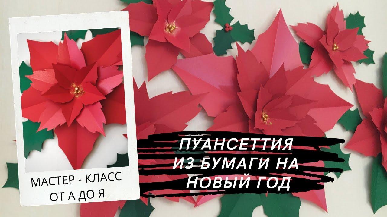 НОВОГОДНЯЯ ПУАНСЕТТИЯ ИЗ БУМАГИ НА СТЕНУ. МК ПОШАГОВЫЙ + ШАБЛОНЫ/DIY FLOWERS FOR THE NEW YEAR