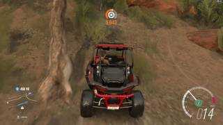 Forza Horizon 3 Polaris RZR 1000