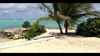 Vidéo de la Villa Pura Vida le luxe en Front de mer Guadeloupe