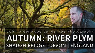 River Plym in Autumn at Dewerstone Woods | Landscape Photography