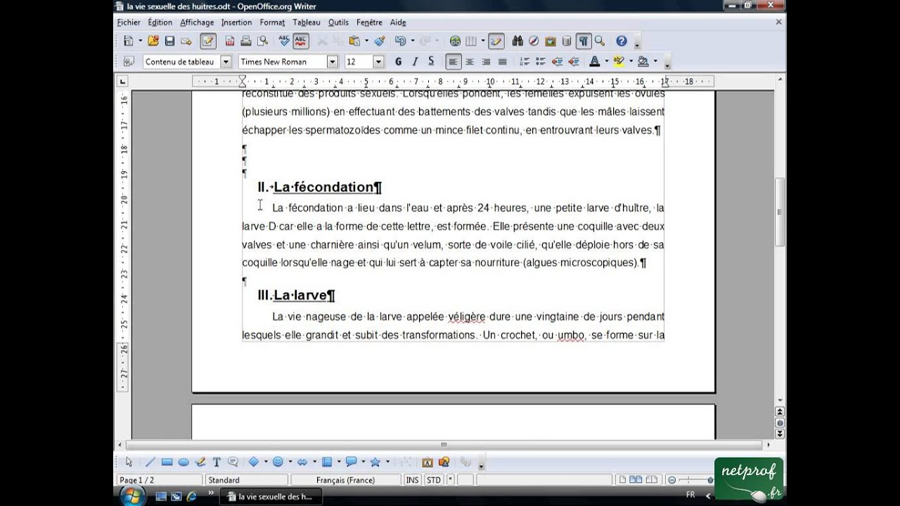 Open office ou libre office texte long 6 ins rer saut - Comment faire un organigramme sur open office ...