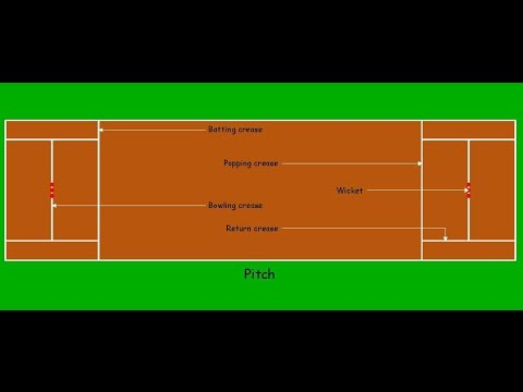 Cricket       Pitch    Details  Lines and Measurements   YouTube