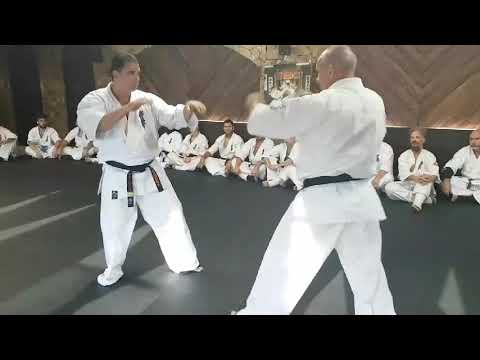Judd Reid And Dean Booth Counter Variations Against A Front Kick