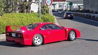 【大黒PA】F40他 スーパーカー加速サウンド/Supercars sound in Japan. F40, Aventador, M4GTS,