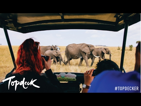 Why you need to go to Africa! | Topdeck Travel