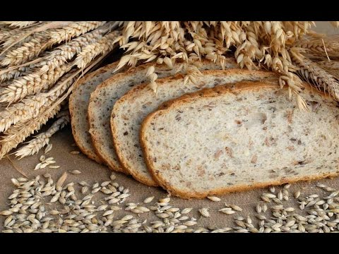 Organic Food,Beverages,Ingredients & Horeca products