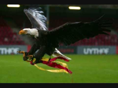Go Ahead Eagles Deventer (fotoclip) - YouTube