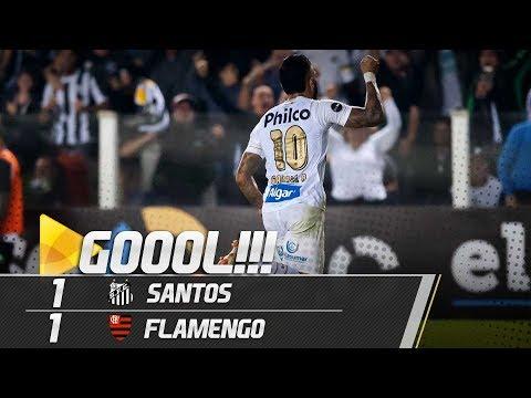 Santos 1 x 1 Flamengo | GOL | Brasileirão (25/07/18)