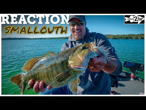 The Best All-Around Smallmouth Bass Presentation
