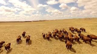 Klangphonics - Great Plains