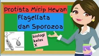 PENYAKIT & GANGGUAN REPRODUKSI - Sistem Reproduksi Pada Manusia   Belajar IPA Kelas 9 SMP/ MTS.