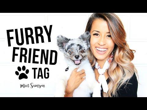 FURRY FRIEND TAG! | Ariel Hamilton