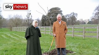 Queen asks Britons to take part in 'tree-bilee'