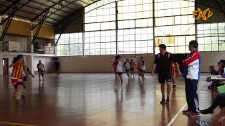 handball regional femenino en el bolsn fanaticos xnd