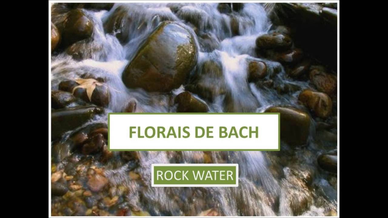 florais de bach rock water youtube