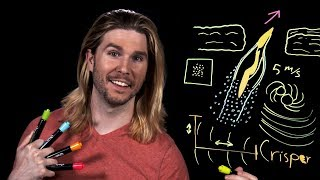 Supercavitating Penguin Torpedoes | Because Science Live!