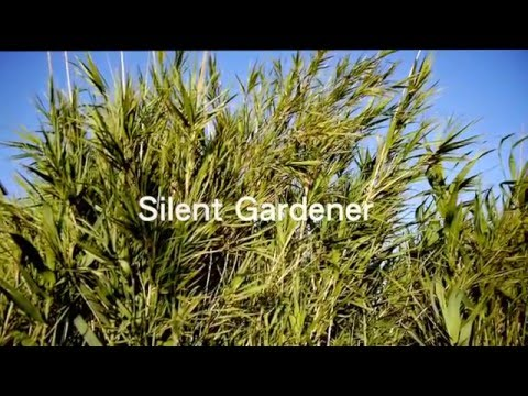 Documentary  -  Silent Garden