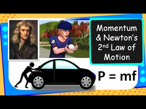Science - What is Momentum and Newton's 2nd Law of Motion in Real Life - English