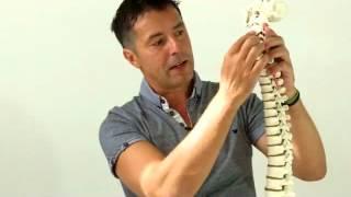 Repeat youtube video Kiropraktika - važnost zdrave kralježnice.flv