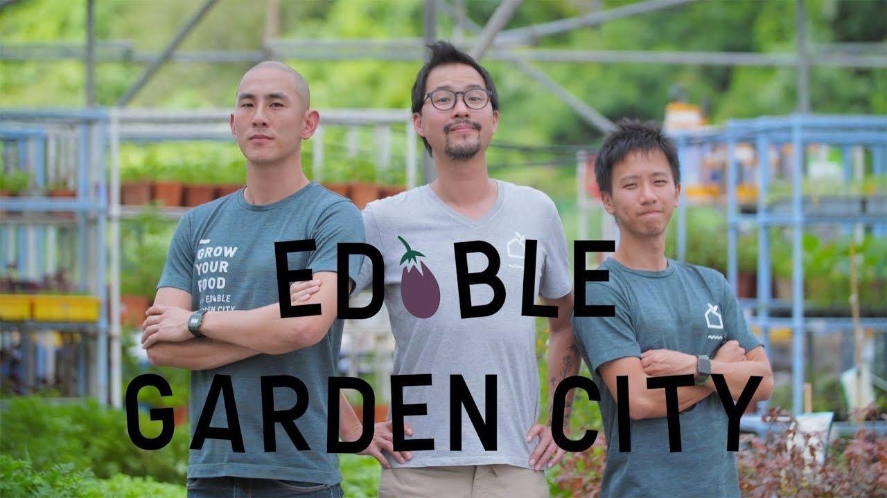 About Ediblegardencity
