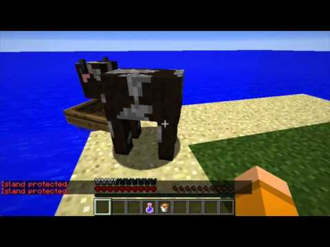 AcidIsland | SpigotMC - High Performance Minecraft