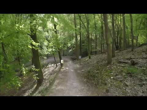 Launch Pad - Forest of Dean - UK - Mountain Bike - Downhill - MTB - DH