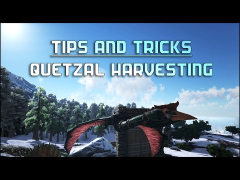 Ark survival tips quetzal farming most popular videos malvernweather Choice Image
