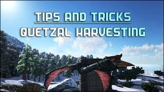 Ark Survival Tips: Quetzal farming