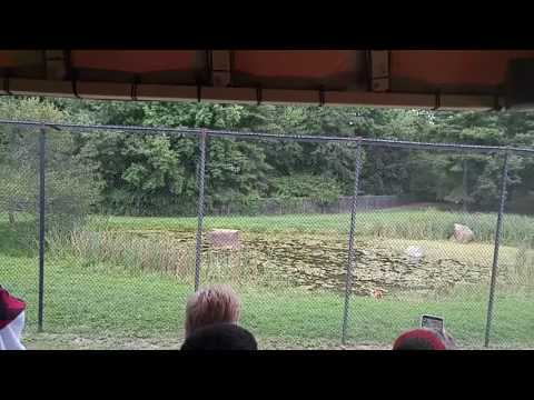 Safari Off Road Adventure part 4 at Six Flags Great Adventure in New Jersey
