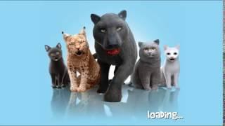 Плохой котенок 3D  небольшие игры заботы о животных котенка для ребенка - малыши детей геймплея