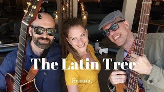 The Latin Tree // Havana // Book Now At Warble Entertainment