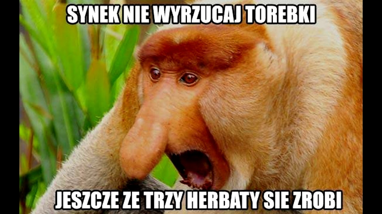 Janusz Czyta Memy Z Nosaczem Youtube