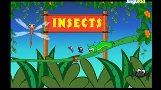 Learn About Insects | Nursery Rhymes | Preschool | Kids | Kindergarten