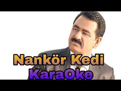 İbrahim Tatlıses - Nankör Kedi Remix (Karaoke) Orjinal Stüdyo