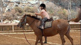 Верховая езда на лошади | Учимся красиво кататься