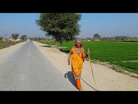 Punjab Village Tour   Pakistan Village Rural Life