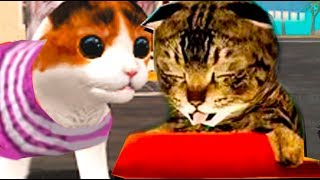 СИМУЛЯТОР Маленького КОТЕНКА #3  котенок игра про котиков мультик видео для детей Валеришка