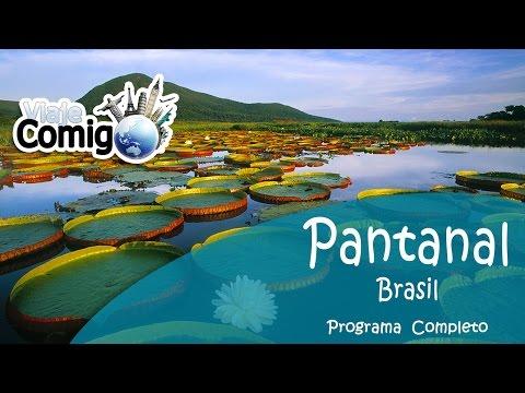 PANTANAL | MATO GROSSO DO SUL | Programa Viaje Comigo