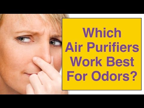 Best Odor Air Purifier