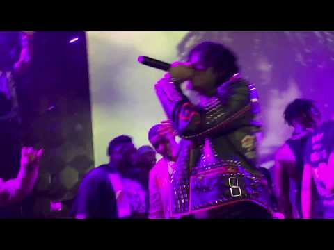 Sahbabii purple ape live in NY
