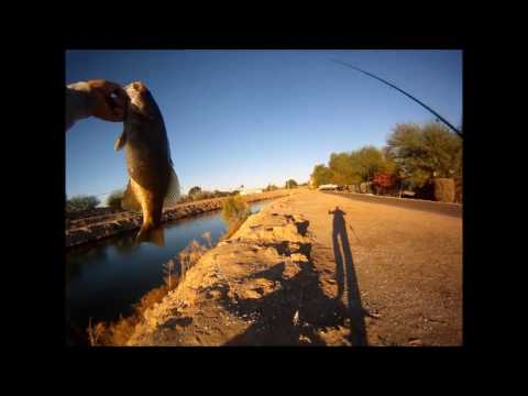 Whopper Plopper Review And Personal Best Smallmouth Bass