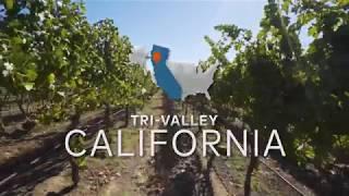캘리포니아주에서 즐기는 꿈 같은 여행: 트라이 밸리의 멋진 와인 지역