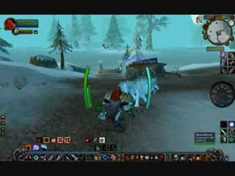 How To Tame Timber, A Dwarf Hunter Tip.