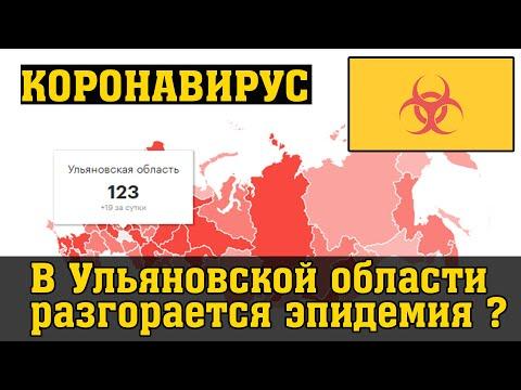В Ульяновской области разгорается эпидемия? Обращение фракции!
