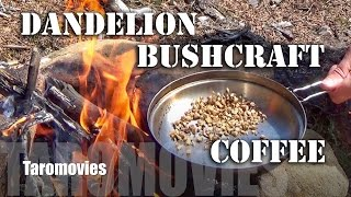 How to make a Bushcraft Dandelion Coffee / HD Video