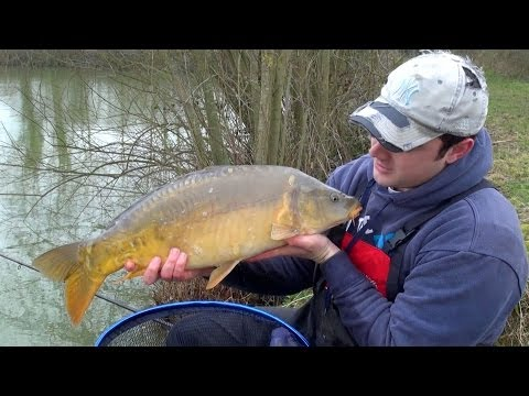 Carp Fishing With Bread -