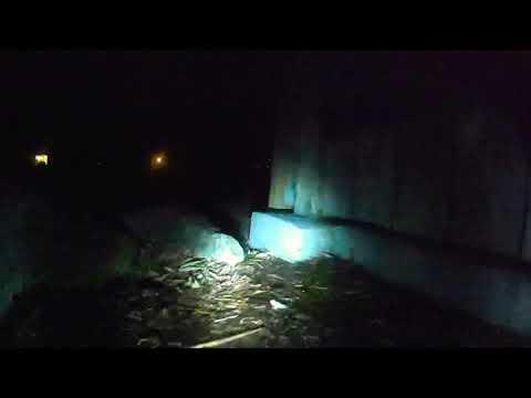 Фото Trx4 Dji Fpv 4WS. Driving from inside the Rotorhome at night