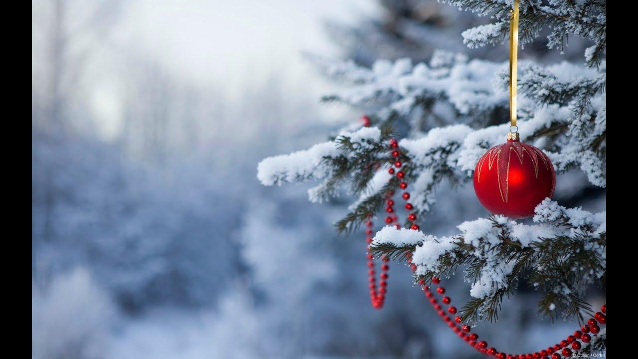 joulun odotus Hyvää joulun odotusta   YouTube joulun odotus