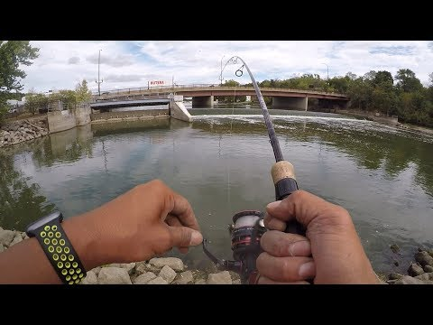 Fishing the Fox River for Smallmouth Bass